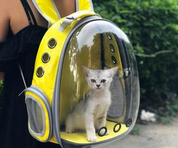 cat carrier backpack Gifts For Travelling