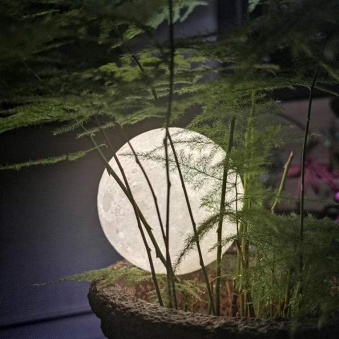 True moon lamp